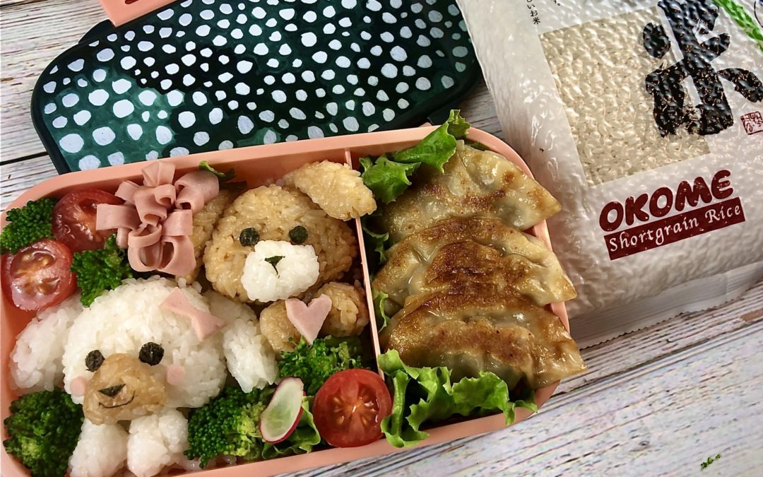 Cute Doogie Bento with Japanese Gyoza
